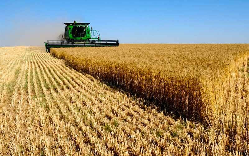 Кому государство отдаст деньги на сельхозтехнику