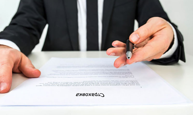 Як правильно вибрати страхову компанію для покупки поліса ОСЦПВ?